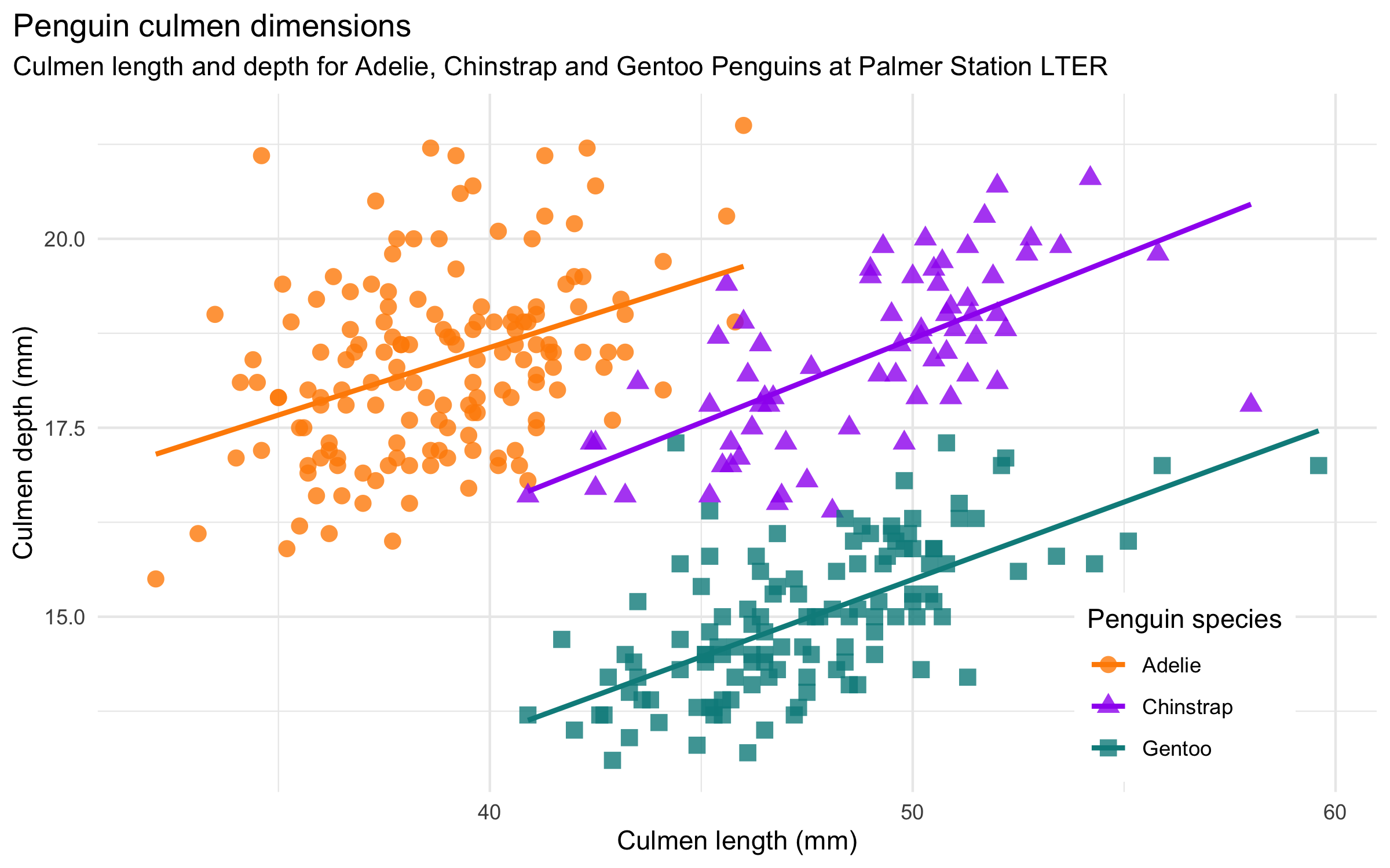 Scatterplot of culmen length and depth clustered by species