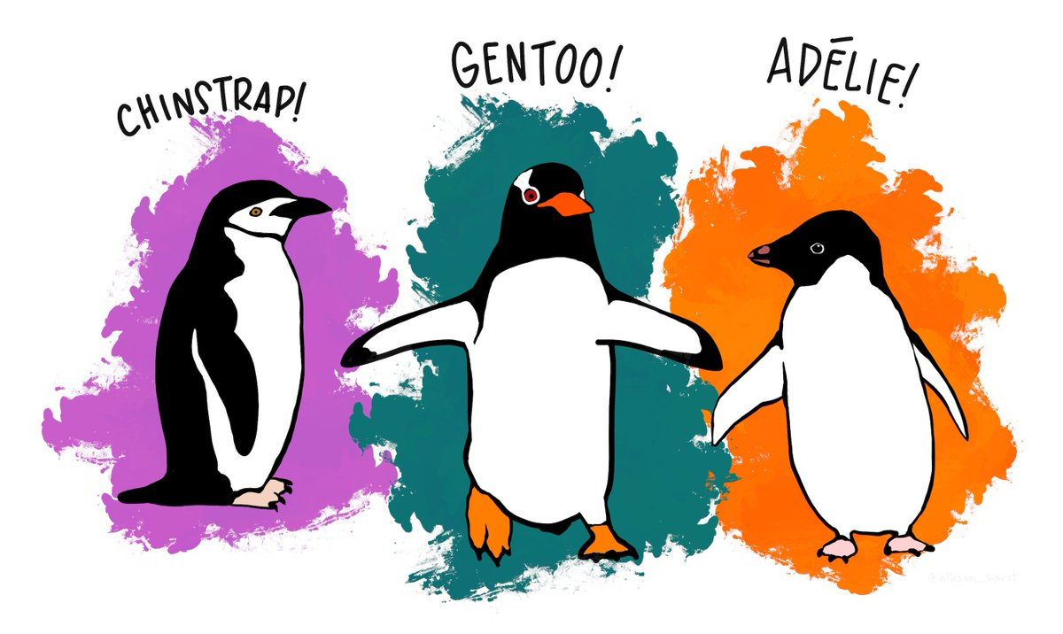 Penguins cartoon to illustrate the penguins data set